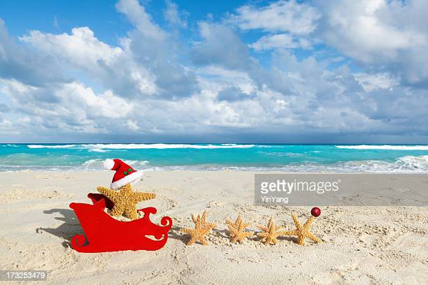 Tropical Beach Christmas Vacation Santa Claus with Starfish and Sleigh