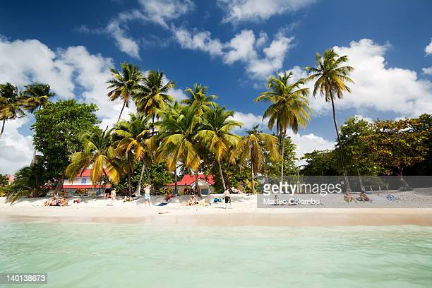 Tropical beach in Martinique