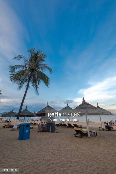 Tropical beach in Nha trang, Viet Nam with palm tree on Aug 17th, 2017