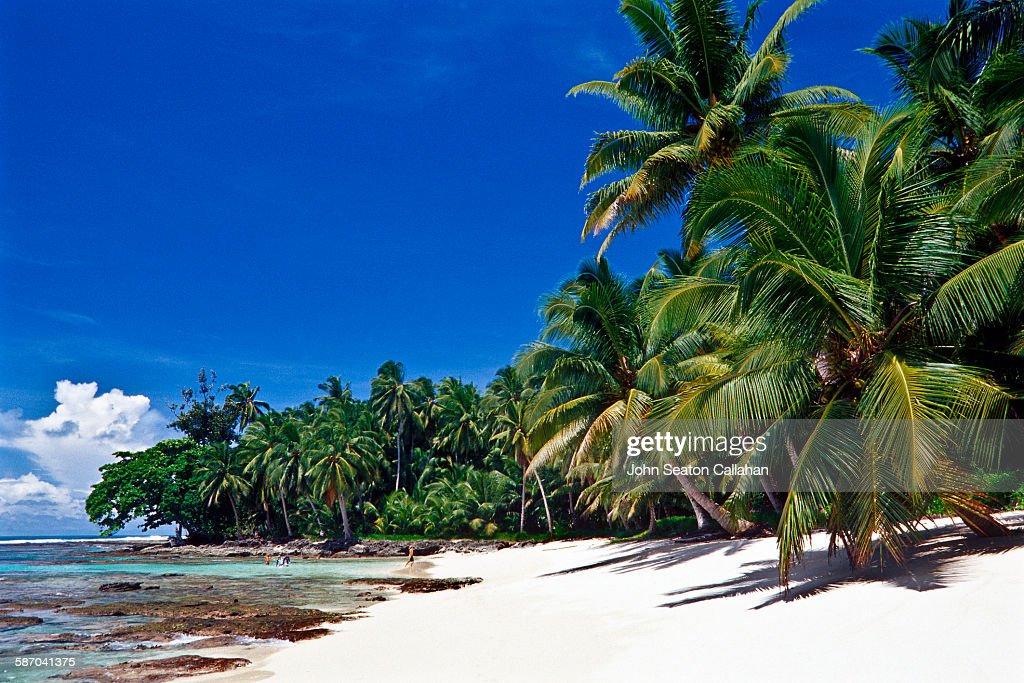 Mentawai Islands Regency - Wikipedia