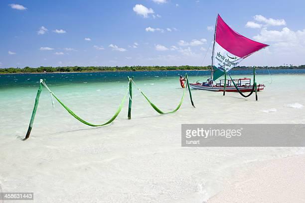 トロピカルビーチ - セアラ州 ストックフォトと画像