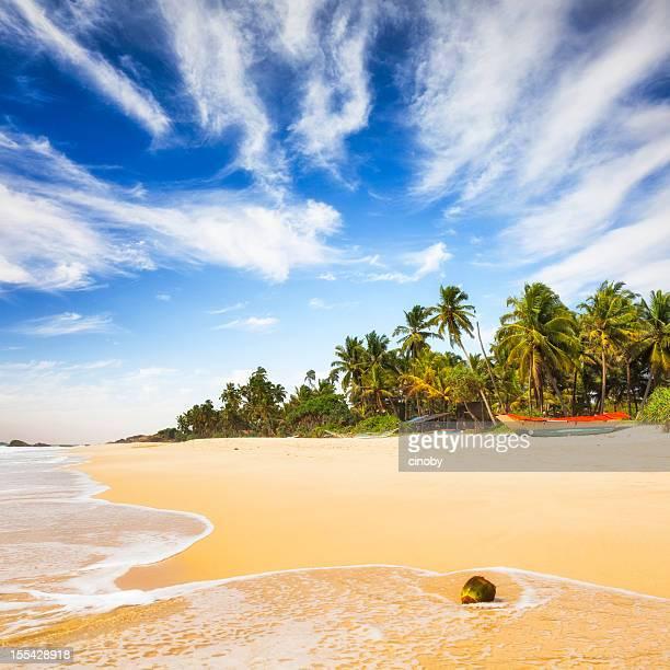 Tropical Beach of Sri Lanka
