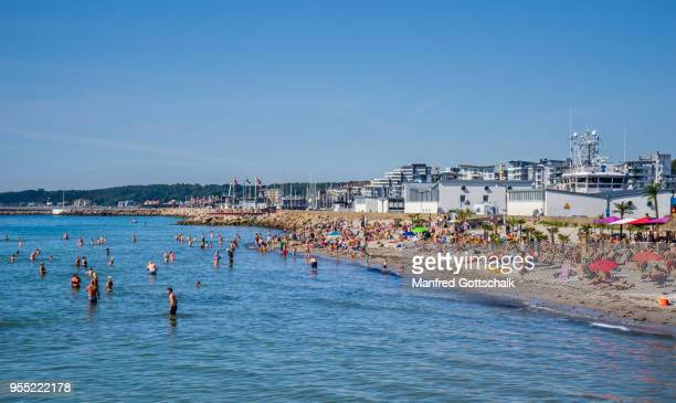 tropical beach of the baltic sea coastal city of helsingborg, scania, sweden - helsingborg stock pictures, royalty-free photos & images