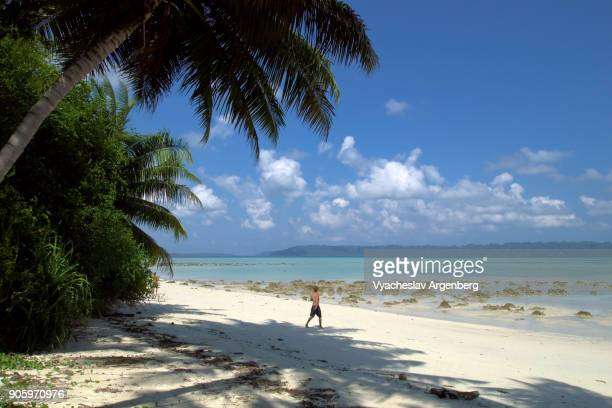 tropical beach on the east side of havelock island, andamans, india - argenberg fotografías e imágenes de stock
