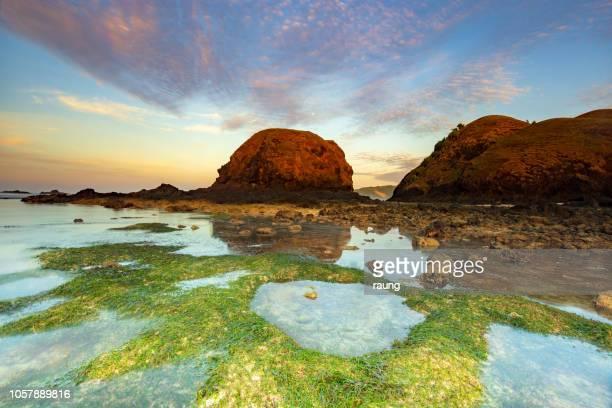 playa tropical - lombok fotografías e imágenes de stock