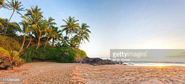 tropical beach - hawaii beach stock pictures, royalty-free photos & images