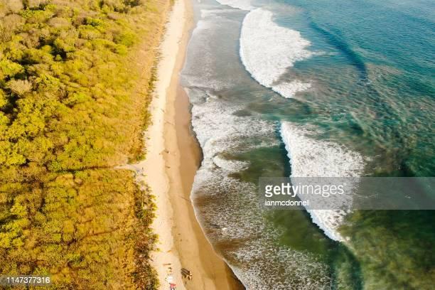 tropical beach - playa tamarindo fotografías e imágenes de stock