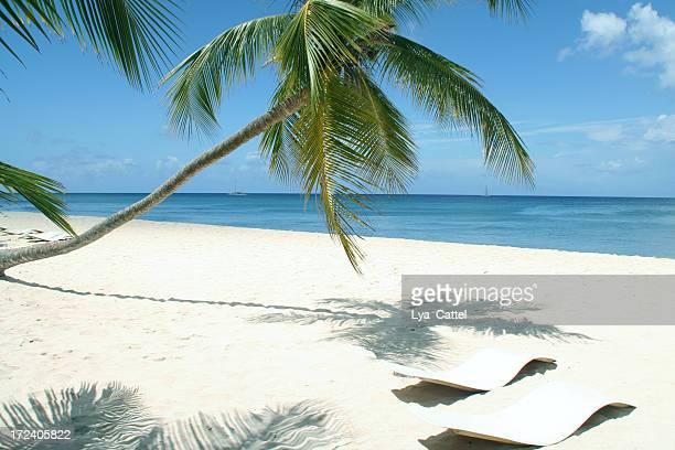 Tropischen Strand # 12