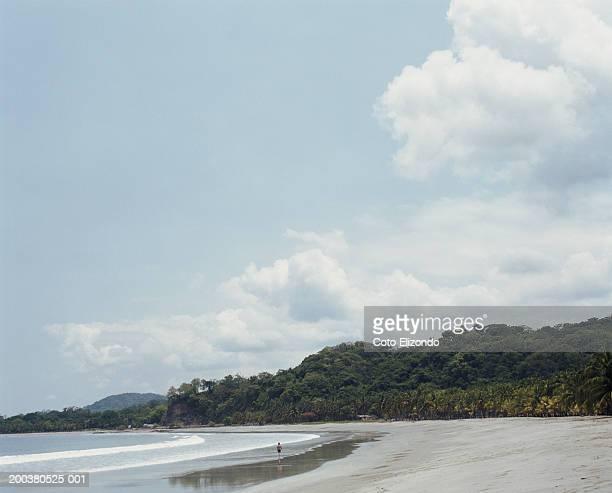 tropical beach - playa carrillo fotografías e imágenes de stock