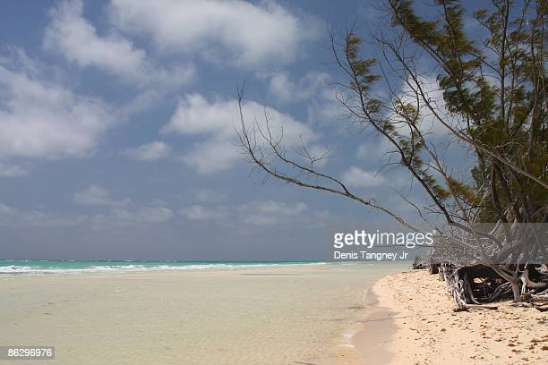 tropical beach - freeport bahamas stock photos and pictures