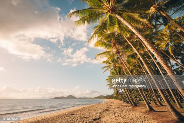 tropical beach queensland