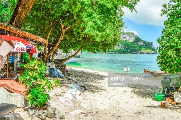 tropical beach scene in thailand - ko samui stock photos and pictures