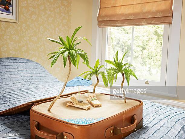 tropical beach scene inside a suitcase
