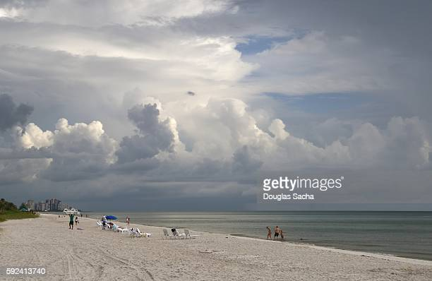 Tropical beach scene, Naples, Florida, USA