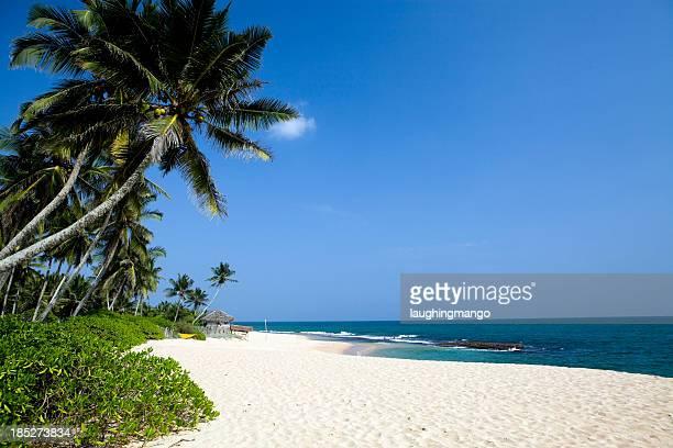 tropical beach Sri Lanka