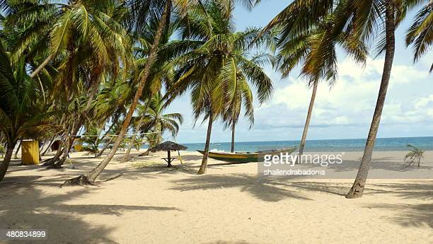tropical beach, victoria island, lagos, nigeria - nigeria stock pictures, royalty-free photos & images