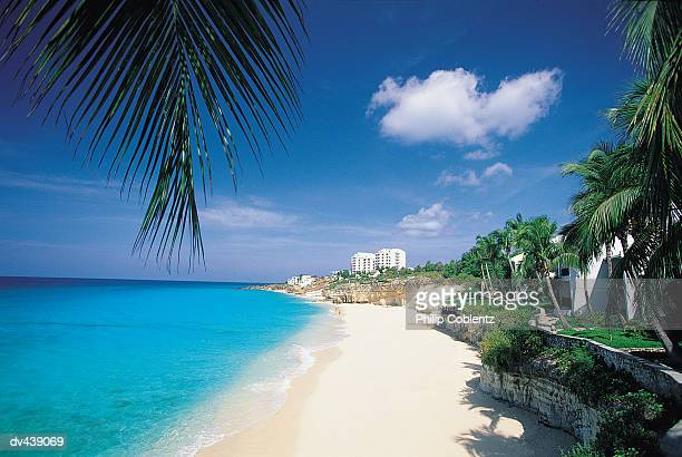 Tropical beach with clear blue water