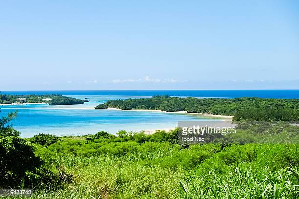 Tropical beach with clear water