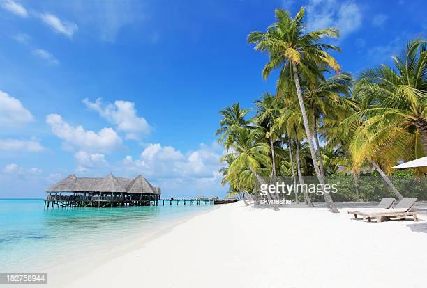 Plage tropicale avec transats et des bungalows sur l'eau