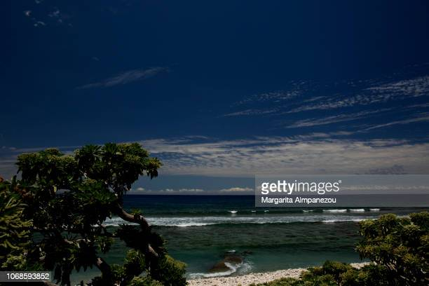Tropical beach with trees, waves and blue sky