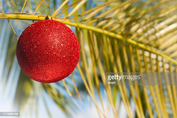 tropical christmas - palm tree ornament - hawaii christmas stock pictures, royalty-free photos & images