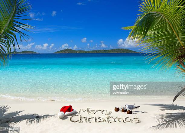 tropical christmas - caribbean christmas stock pictures, royalty-free photos & images