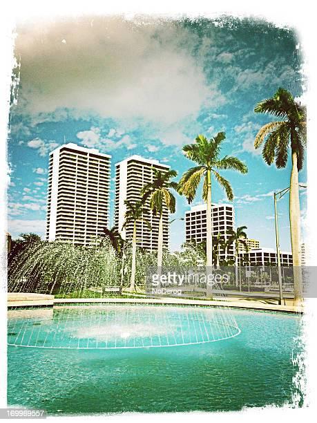 Tropical cityscape