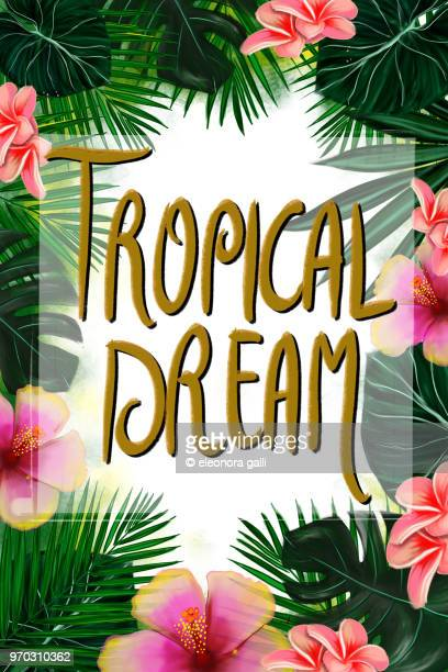 Tropical Dream