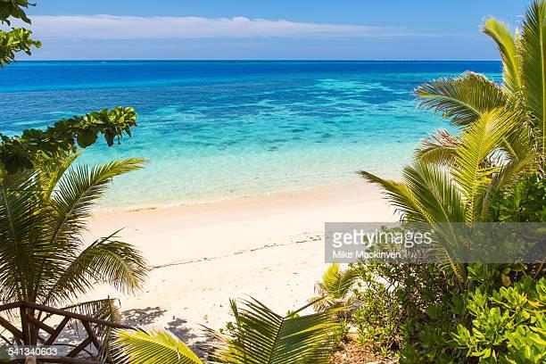 Tropical Fijian beach