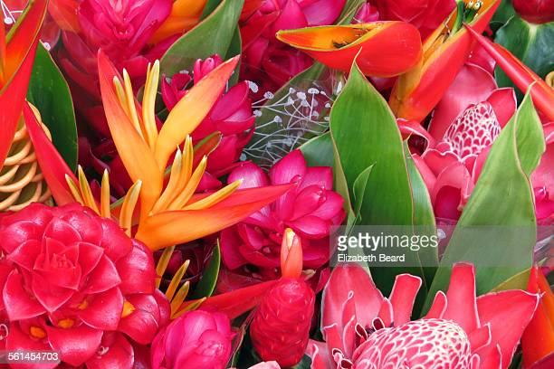 Tropical flowers, Papeete market, Tahiti