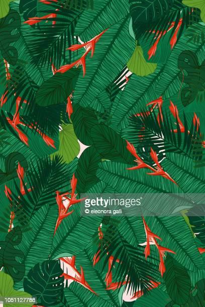 tropical forest - motif tropical photos et images de collection