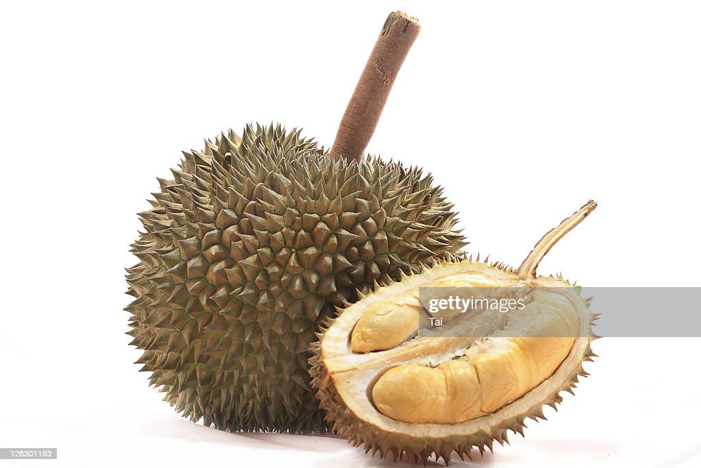 Tropical fruit, durian : Stock Photo