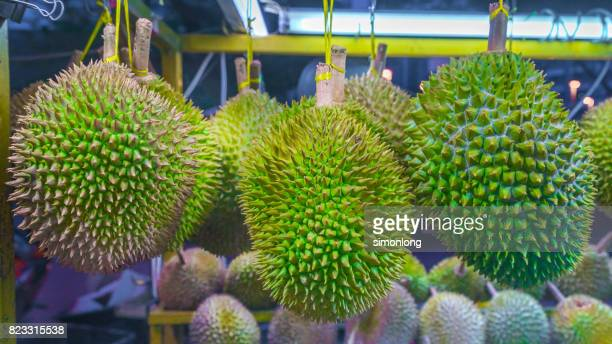 Tropical Fruit Durians