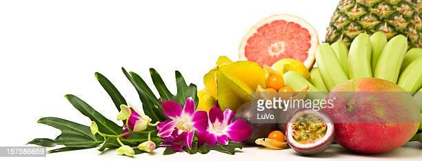 Tropical fruits panorama