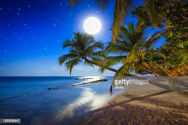 Tropical Full Moon Night