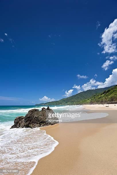 tropical playa de arena dorada del caribe - paisajes de venezuela fotografías e imágenes de stock