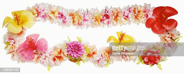 a tropical hawaiian flower lei - hawaiian lei stock pictures, royalty-free photos & images