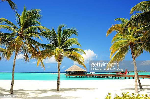 tropical island and lagoon, maldives, indian ocean - maldives stock pictures, royalty-free photos & images