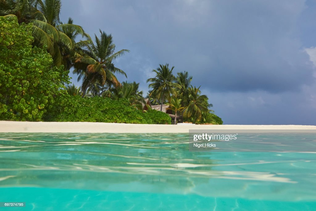 a tropical island beach and seashore ストックフォト getty images