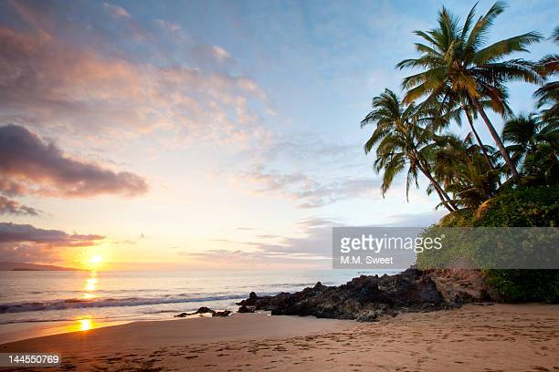 Tropical island beach at sunset