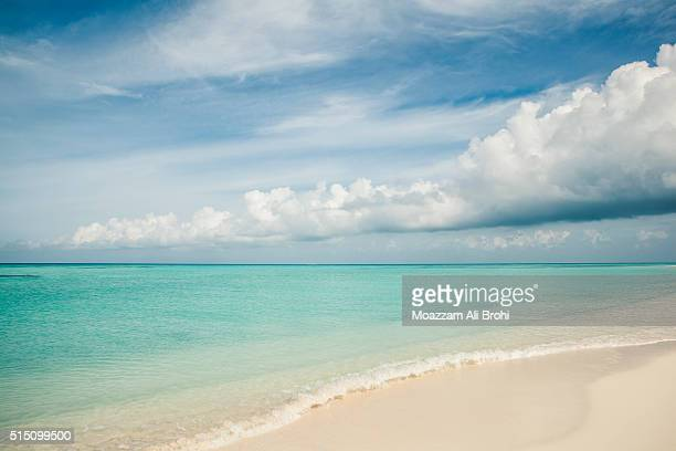 Tropical Island Beach - Dry Tortugas in Gulf of Mexico