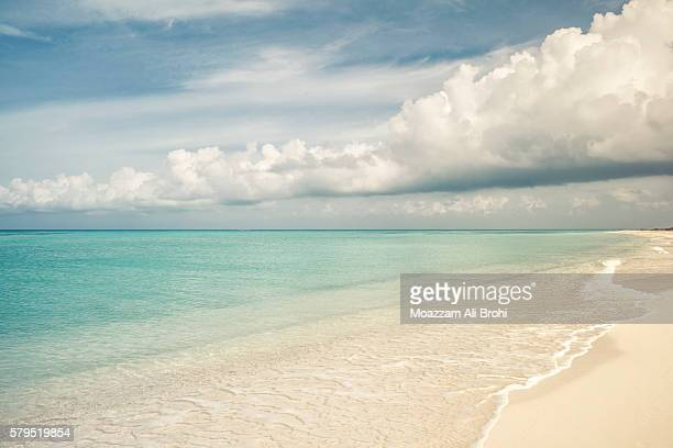 tropical island beach - dry tortugas in gulf of mexico - dry tortugas stock pictures, royalty-free photos & images