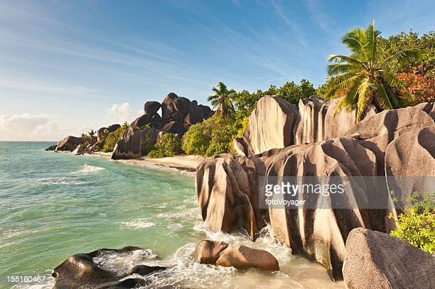 tropical island beach idyllic palm tree ocean - la digue island stock pictures, royalty-free photos & images