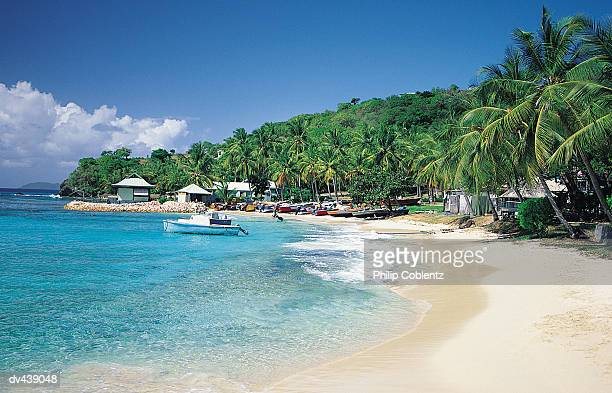 tropical island beach - saint vincent and the grenadines stock pictures, royalty-free photos & images