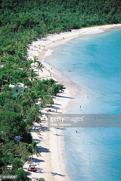 tropical island beach - magens bay stock photos and pictures