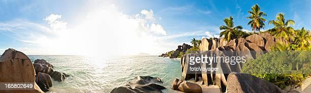 Tropical island beach sunburst palm panorama