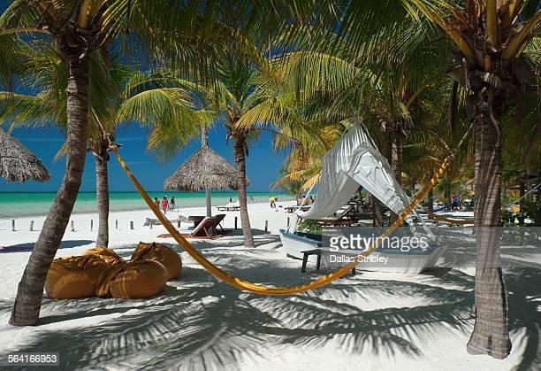 Tropical island beachfront, Holbox, Mexico