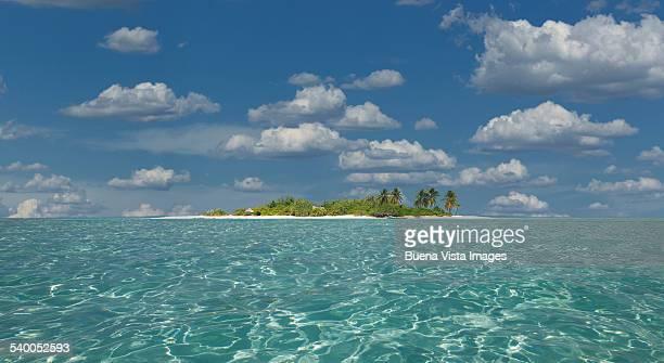 Tropical island in a clear sea