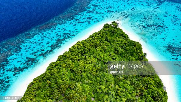 tropical island in the ocean - pacific ocean stock pictures, royalty-free photos & images