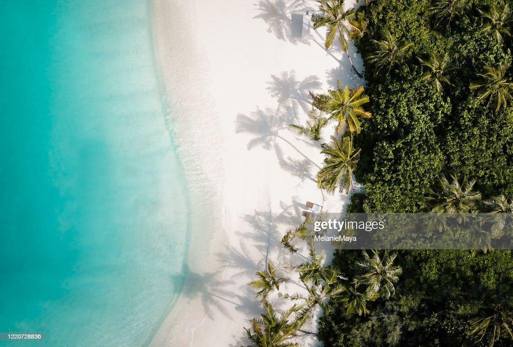 Plage tropicale de palmier d'île d'en haut : Photo